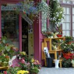 Business Details of Flower Shops